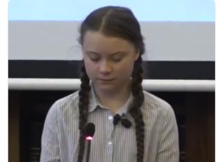 Greta Thunberg senato italiano
