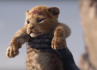 il re leone film 2019