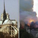 Notre Dame, ecco quanti milioni sono stati donati finora